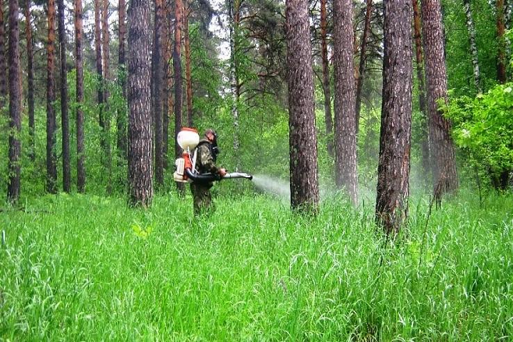 Обработка от клещей лесных массивов в Вологде